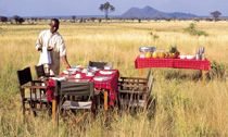 Elsas-Kopje-Meru-Bush-Breakfast