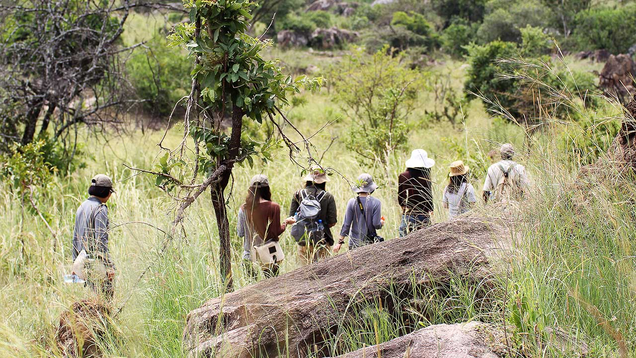 Elewana Collection - One of the best experiences to enjoy while in