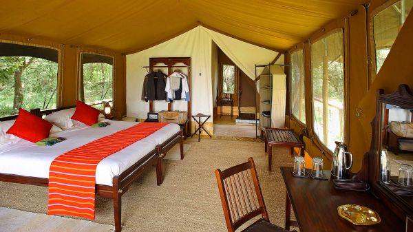 elephant-pepper-camp-luxury-tent-5D4115080-9EC4-FF02-9FC7-CFF7EC66C334.jpg