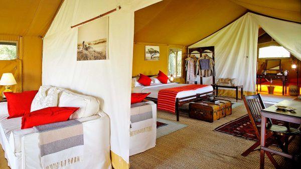 elephant-pepper-camp-family-honeymoon-tent-22AC450FD-3342-6E4C-855D-EB2A23E09B7A.jpg