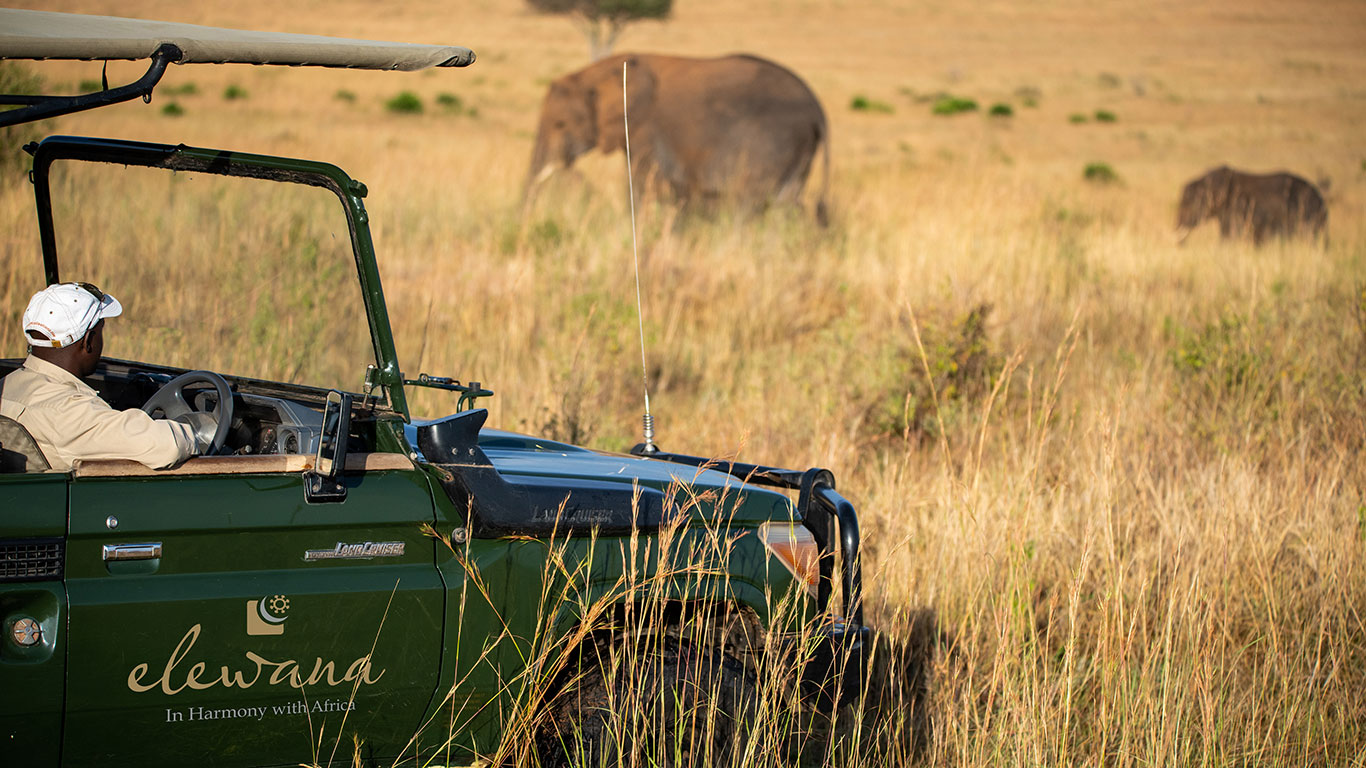 Sand River Game Drive