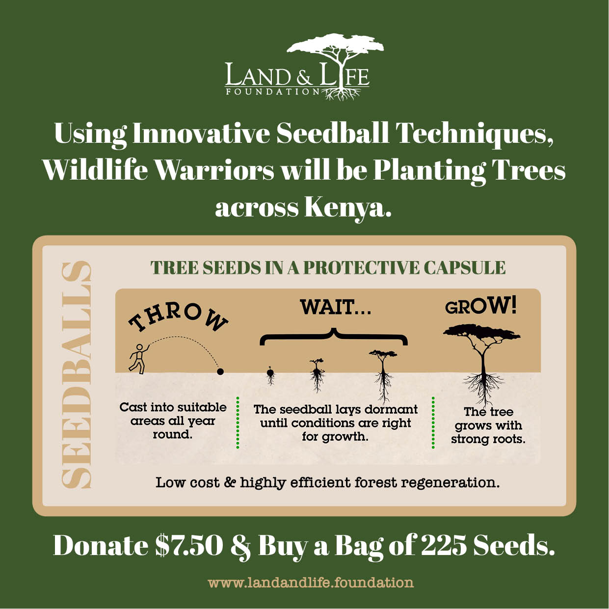 SeedBall for Warriors Earth Day