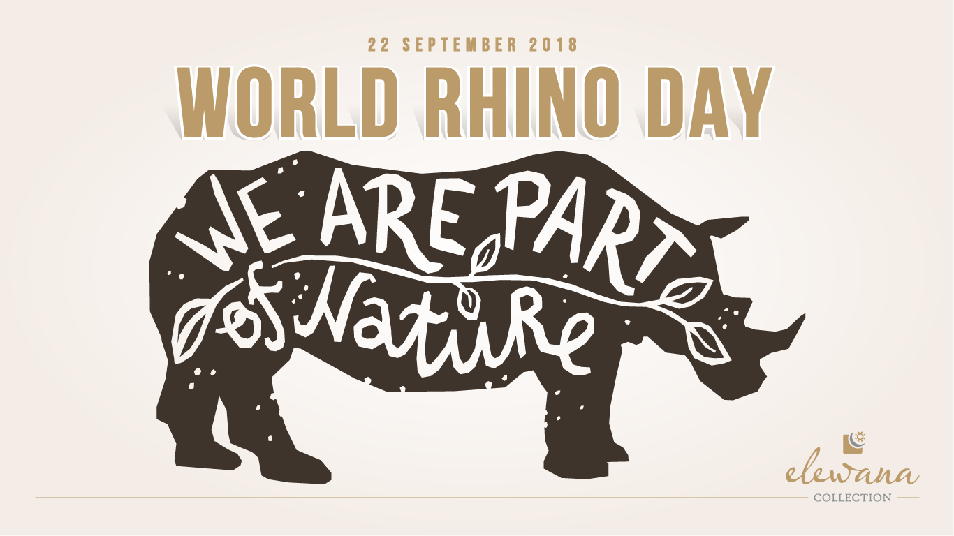 world-rhino-day-web